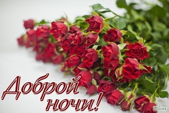 Открыток павловск, красивые открытки с цветами спокойной ночи