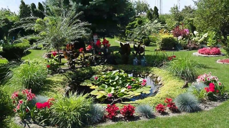 Najładniejszy ogród w Dobrzyniu nad Wisłą 3 lata później (2017)