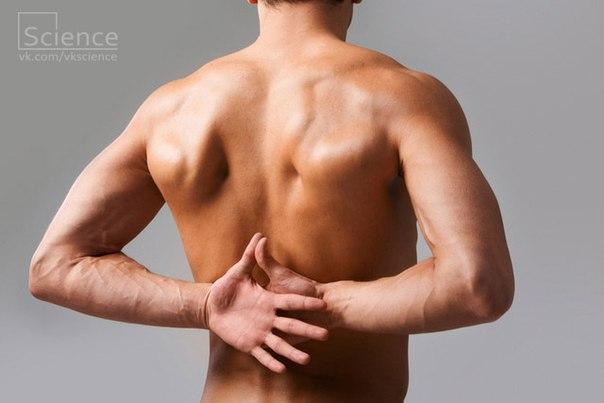 Что нельзя перед узи предстательной железы