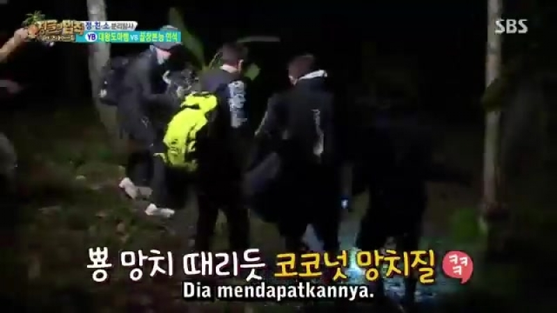 Law of the jungle Kompilasi top 3 kejadian konyol