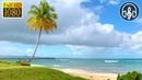 Успокаивающий Шум Океана на Тропическом Острове. 8 Часов Звука Волн Для Сна, Учебы и Релаксации