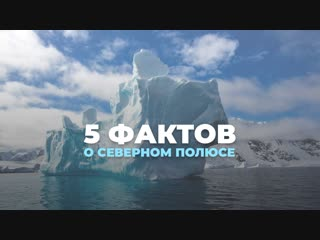 5 фактов о Северном полюсе