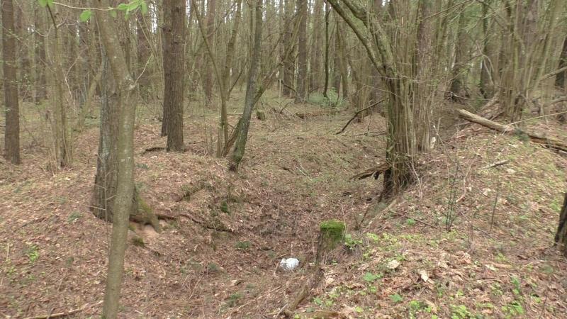 Сморгонь Лес 2 Вторая траншея с восточной стороны леса Часть 2