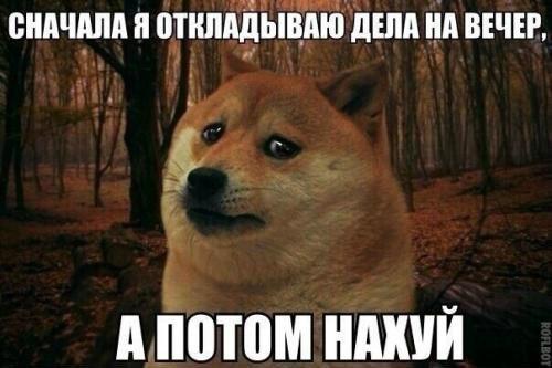Фото №385912802 со страницы Александра Количенко