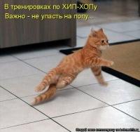 Смешная Волна, 1 августа , Минск, id179481266