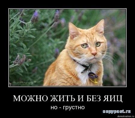 не грусти: