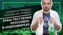 Почему в городах России так грязно? | Краш-тест белых кроссовок в Новосибирске