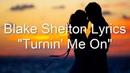 Blake Shelton -  Turning me on (lyrics)