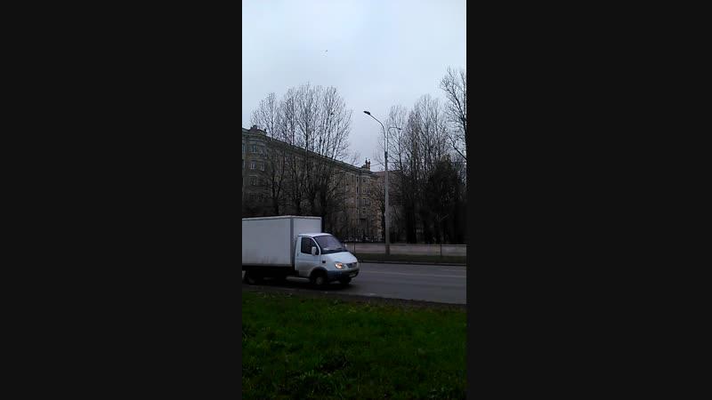Вазоны в районе Кировского завода