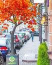 сказочный Дмитровский переулок. Осень - безумно красивое время года…