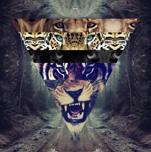 аватарка пантера:: pictures11.ru/avatarka-pantera.html