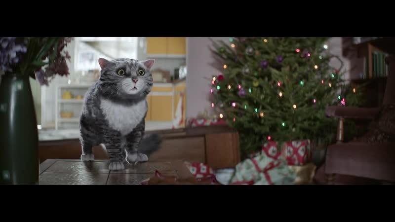 Christmas Advert - Mogs christmas calamity.