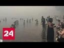 Огонь превратил Аттику в выжженную землю живых найти все сложнее Россия 24