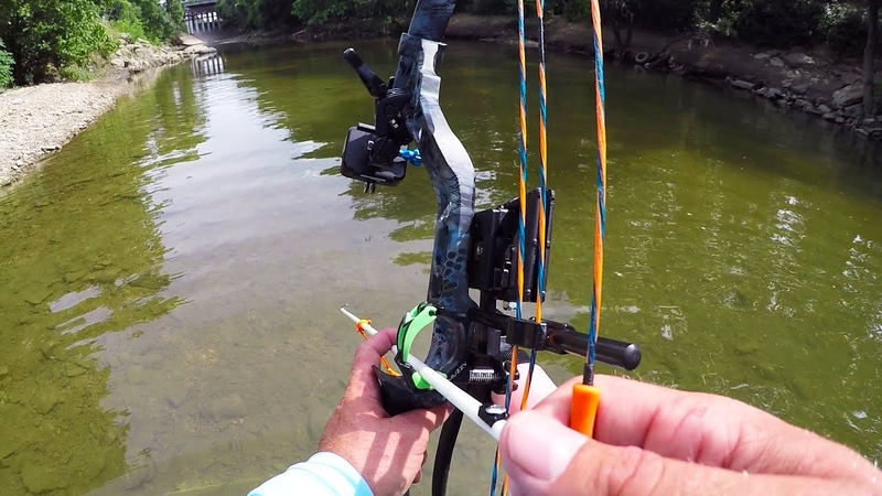 Bowfishing in a SHALLOW CREEK
