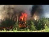 В Нижегородской области из-за аномально жаркой погоды начали гореть леса - Первый канал