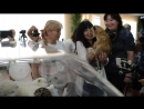 ПРЕЗЕНТАЦИЯ самых редких кошек на земле .рожденных в Парке Львов Тайган !Часть 3