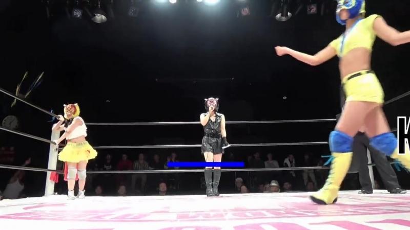 Kikimaru vs Bear Cat vs Starlight Kid