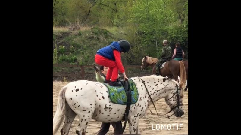 Оздоровительная верховая езда. Андрей и Барсик