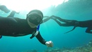Dahab'18. Freediving bubbles fun-dive