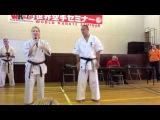 Техника от Цукамото!) Shinkyokushinkai World karate seminar Norichika Tsukamoto