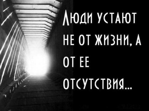 https://pp.vk.me/c7001/v7001232/188d0/3x3uhmKNChM.jpg