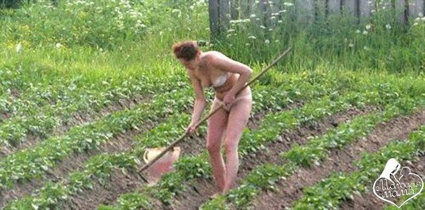 Огород ню фото