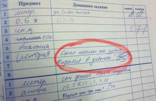 Записи в дневниках...