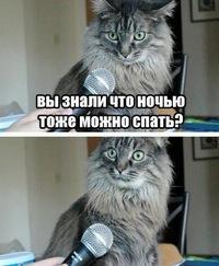 Никита Бизяев, 26 декабря , Омск, id183907366