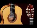 Guitarras Almansa Aeromusic