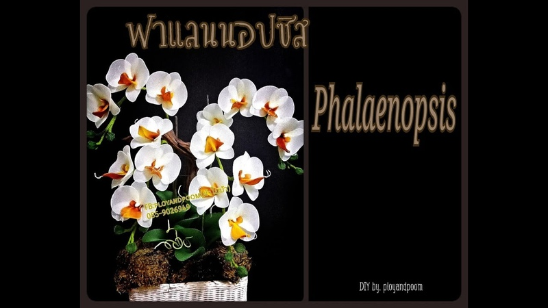 How to make (ฟาแลนนอปซิส (phalaenopsis orchids) nylon/stocking flower by ployandpoom