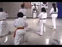 Episode 26: Tang Soo Do Class with Young Beginner Students - Forms, Kicks, Combination Techniques