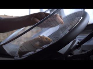 Новый грузовик Volvo FMX - успешный трюк от хомяка