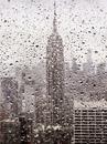 Мне нравится осень, когда непременно идет дождь, стоят мокрые голые статуи…