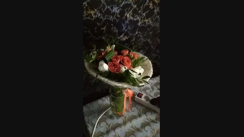 Моё ДР Подарок от Юбиляра Владимир Николаевич
