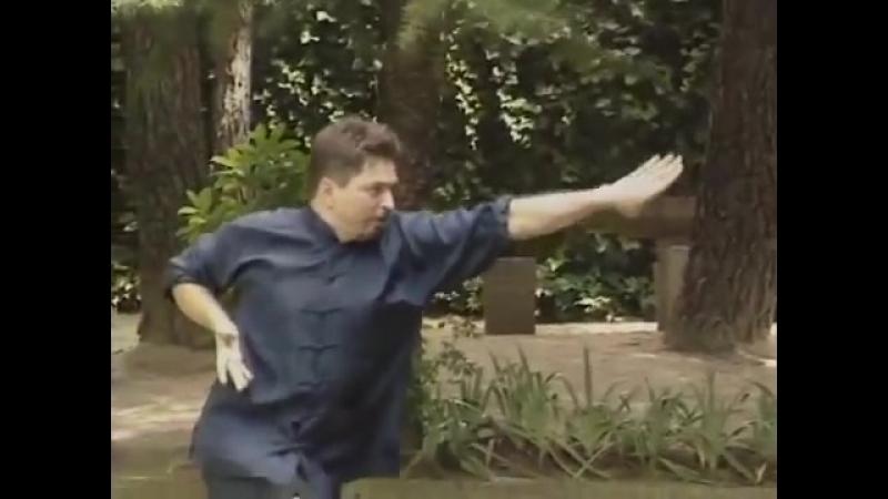 Kung Fu Choy Li Fut le Kung Fu de Dr Wong Sifu Pedro Rico