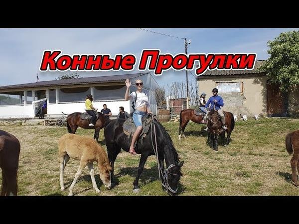 Репортаж о нашем конном клубе Золотая шпора