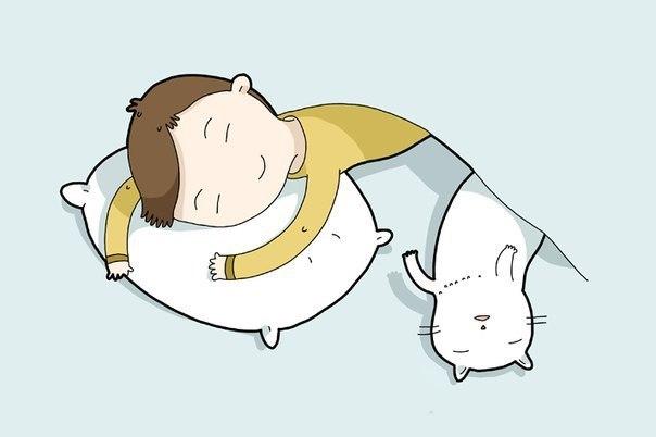Я очень люблю спать. Я всегда хочу спать. Спать не предаст. Спать не ранит. Я по.