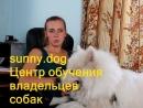 Что делать если собака проглотила инородный предмет Мячик носок кулёк