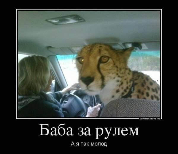Всяко - разно 36 )))