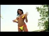 Dj Next Girlicious - Sexy Bitch