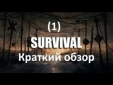 Survival (1) Краткий обзор на игру