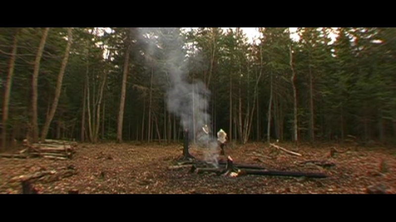 Норвежское открытие Америки (2007)