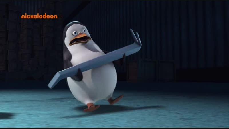 Пингвины из Мадагаскара 1 сезон 1-17