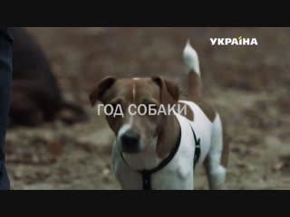Год собаки 1-4 серии ( Мелодрама ) от 16.12.2018