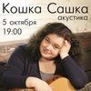 Кошка Сашка в Волгограде 5.10.2014