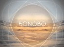 Maya Jane Coles : Something In The Air [Bonobo Remix]
