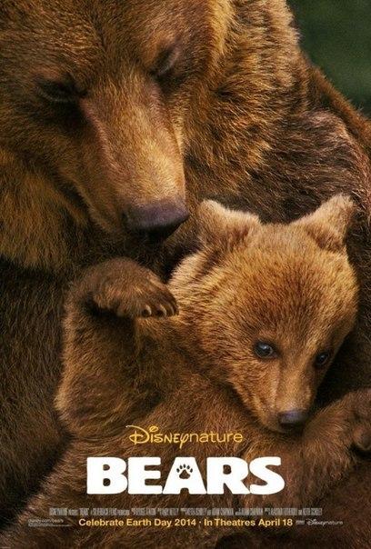 3 потрясающих, красивых, документальных фильма про животных!