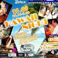 CLOSED PARTY VSMU/Hawaii night/пенная вечерика