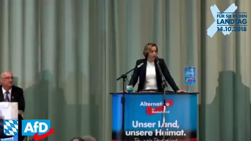 AfD Wahlkampf in Gefrees - Thomas Rausch, Michael Wüst, Gerd Kögler, Beatrix von Storch 04.10.2018