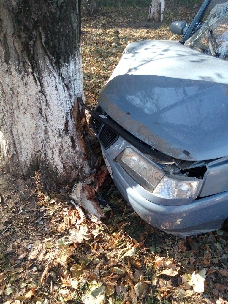 В Таганроге пьяный водитель такси с пассажиром врезался в дерево
